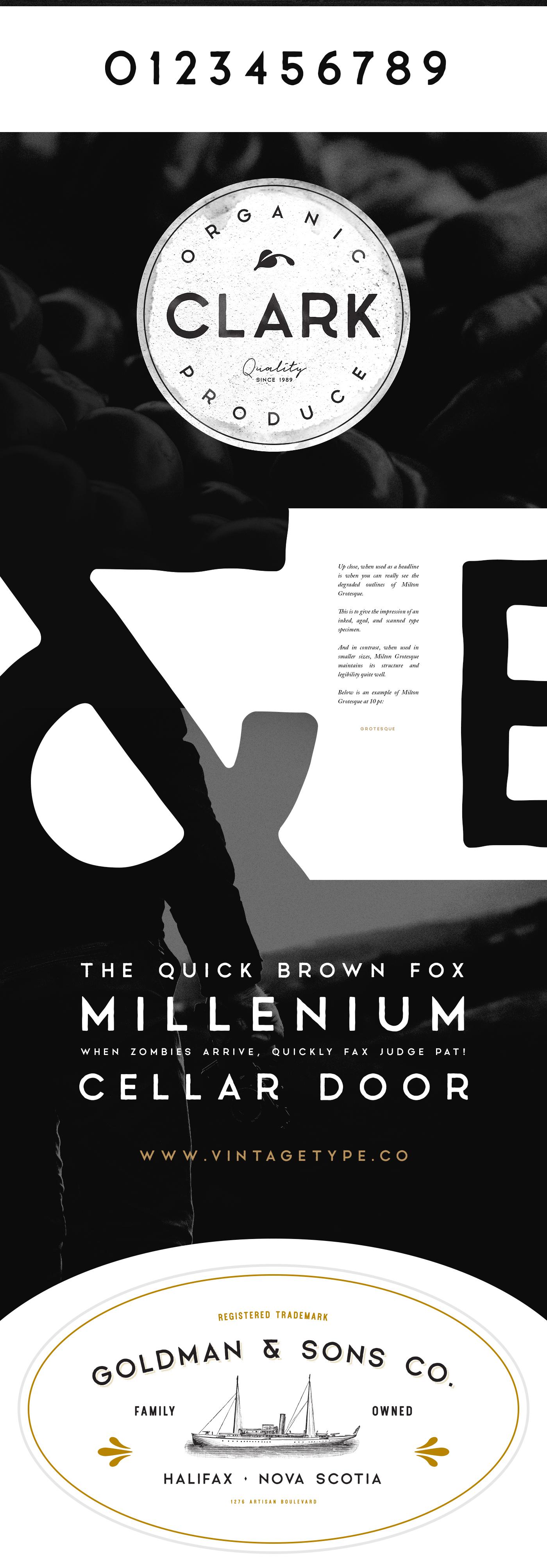 Milton Grotesque FREE Font 2017