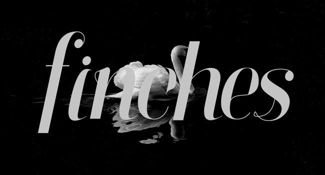 Finches Free Script Font October 2017